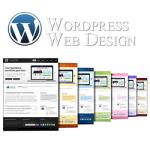 Website-em-wordpress-2